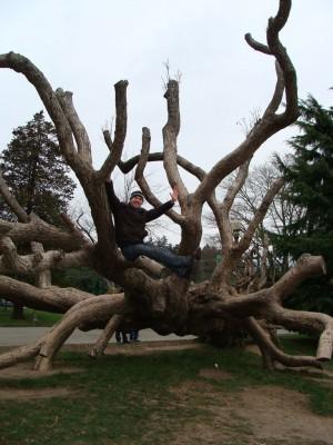 Я на дерево даже залез!